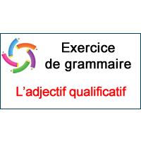 6 Accord De L Adjectif Qualificatif Ce2 Cm1 Cm2 6eme Fle
