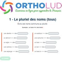 1 Exercice De Grammaire Le Pluriel Des Noms Tous